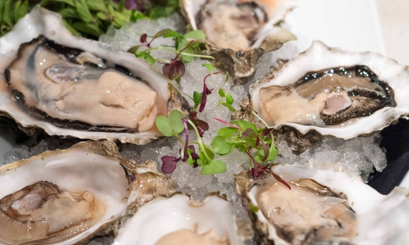 Raw Oysters Catering for Corporate Events